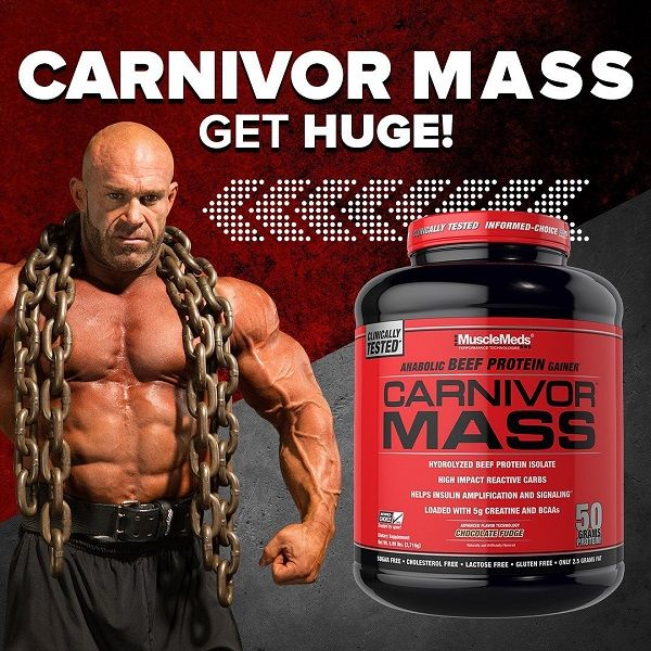 MUSCLEMEDS - CARNIVOR MASS - ANABOLIC BEEF PROTEIN GAINER - 5,6 LBS - 2534 G
